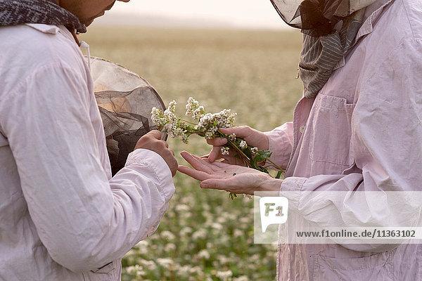 Schnappschuss von männlichen und weiblichen Imkern bei der Pflanzeninspektion im Blumenfeld  Ural  Russland