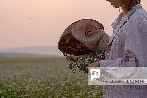 Schnappschuss einer Imkerin  die eine Pflanze im Blumenfeld inspiziert  Ural  Russland