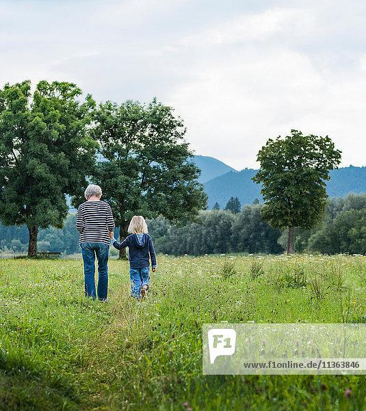 Rückansicht von Großmutter und Enkel im Feld  Füssen  Bayern  Deutschland