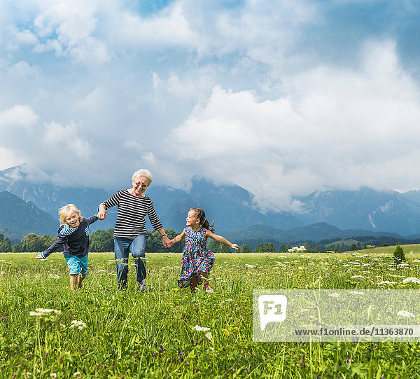 Großmutter und Enkel laufen im Feld und halten Händchen  Füssen  Bayern  Deutschland