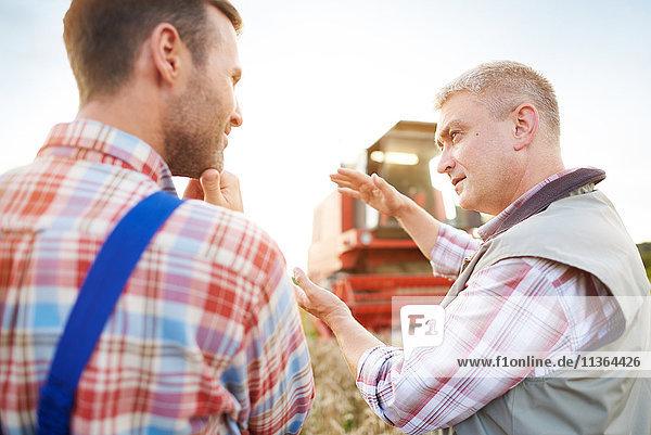 Rückansicht der Bauern im Weizenfeld beim Plaudern