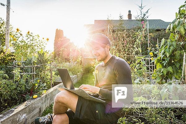 Man typing on laptop in sunlit community garden  Vancouver  Canada