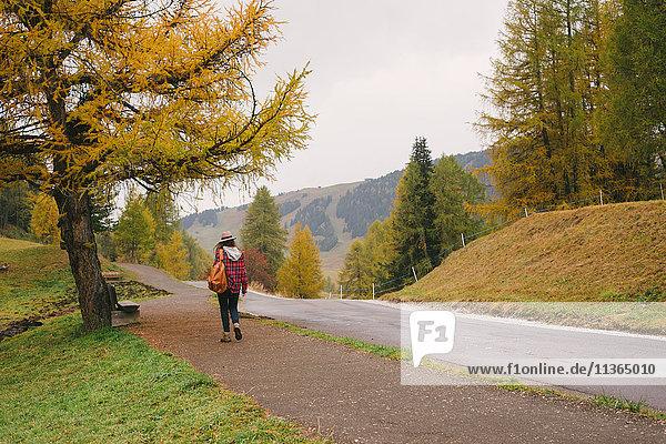 Wanderer zu Fuss auf der Strasse  Park Seiser Alm  Dolomiten  Südtirol  Italien