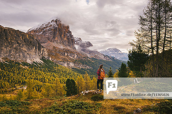 Landschaftsgenuss für Wanderer  Lagazuoi  Dolomiten  Südtirol  Italien