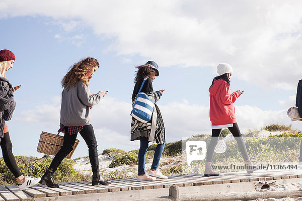 Row of young adult friends strolling along beach boardwalk reading smartphones  Western Cape  South Africa