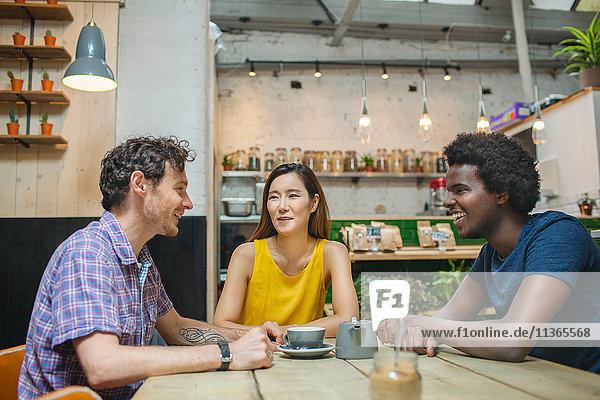 Frau und männliche Freunde chatten zusammen im Café