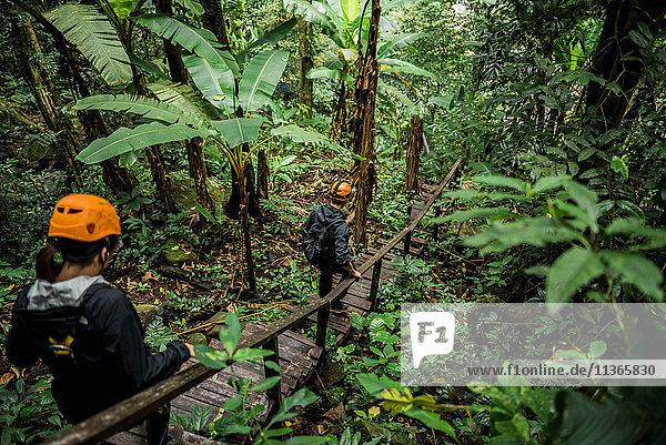Wanderer über eine Holzbrücke im Wald  Ban Nongluang  Provinz Champassak  Paksong  Laos