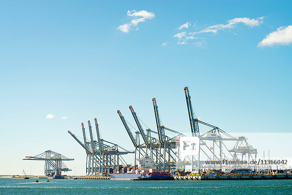 Moderne Containerterminals in der Tweede Maasvlakte  Rotterdamer Hafen  Niederlande