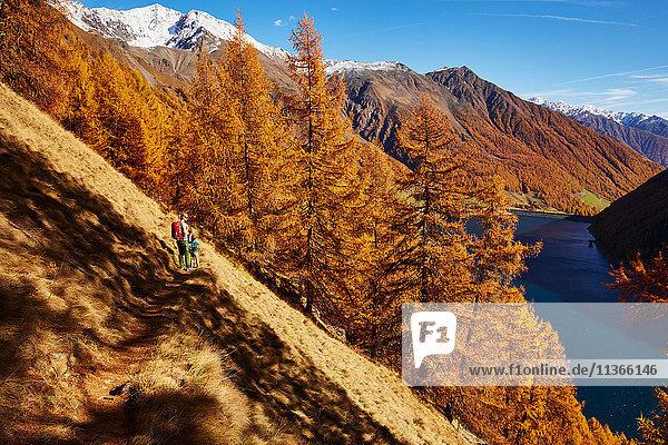 Familie schaut auf Ansicht  Schnalstal  Südtirol  Italien