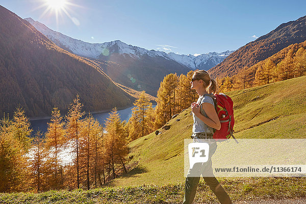 Frau beim Wandern  Ausblicke betrachten  Schnalstal  Südtirol  Italien