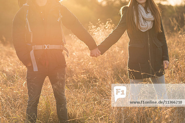 Young couple walking through field  holding hands  mid section