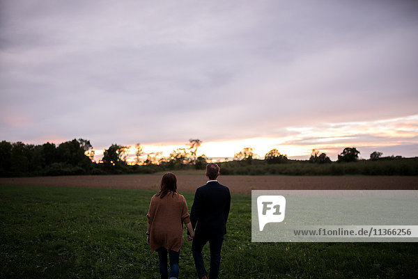 Rear view of romantic couple in field watching sunset