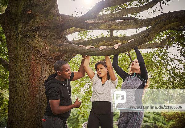 Personal Trainerin  die zwei Frauen mit Hilfe von Parkbaumzweigen in Pull-Ups unterweist