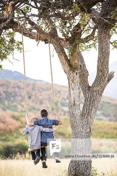 Two boys (4-5  6-7) sitting on swing