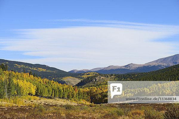 USA  Colorado  Scenic view of Kenosha Pass