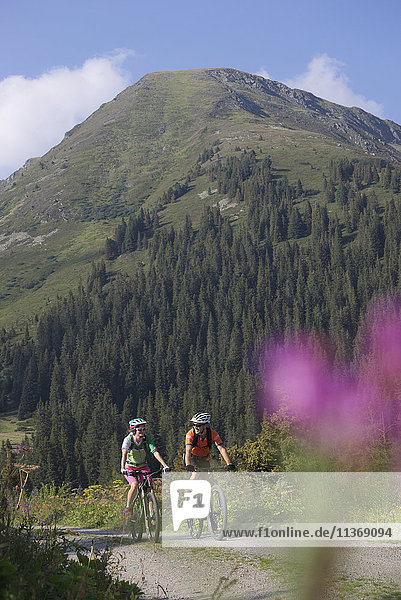 Two mountain bikers riding on dirt road through forest  Zillertal  Tyrol  Austria