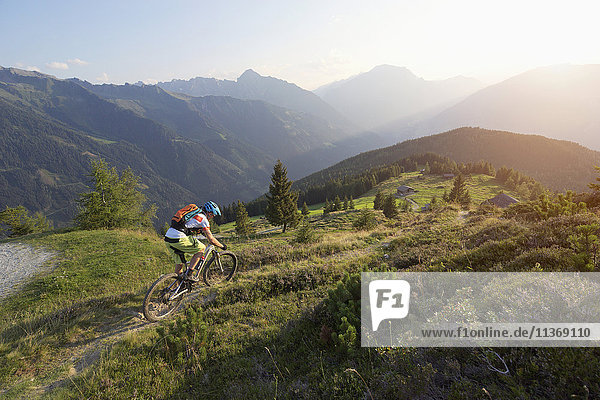 Mountain biker riding on uphill in alpine landscape during sunset  Zillertal  Tyrol  Austria