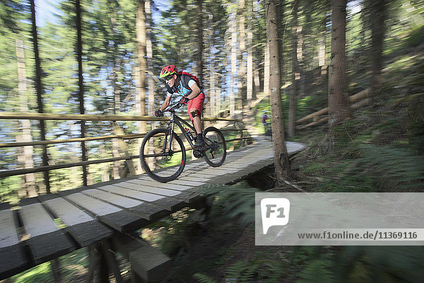 Mountain biker riding on footbridge through forest  Zillertal  Tyrol  Austria