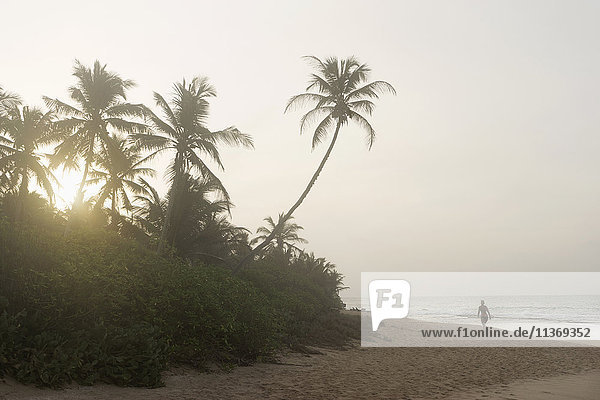 Scenic view of beach at sunset  Tangalle  South Province  Sri Lanka