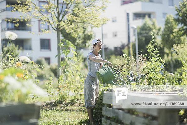 Mature woman watering plants in urban garden