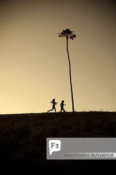 Mixed Race mother and daughter running near palm tree