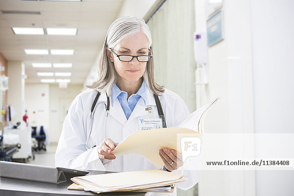 Caucasian doctor reading files in hospital
