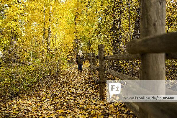 Caucasian woman walking near wooden fence in autumn