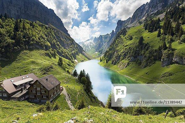 Ausblick von Bollenwees Alp auf den Fählensee  Rüte  Appenzell Innerrhoden  Schweiz  Europa