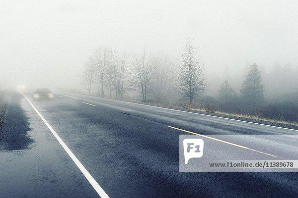 Autos mit Licht  schlechte Sicht bei dichtem Nebel auf Straße  Deutschland  Europa