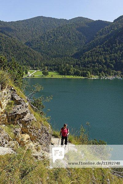 Woman hiker on Mariensteig trail  Achen Lake  Tyrol  Austria  Europe