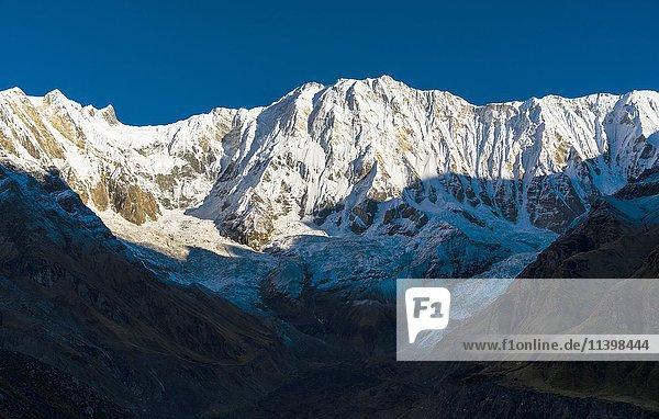 Ausblick auf den schneebedeckten Annapurna I  North Face  bei Sonnenaufgang  Chomrong  Kaski District  Nepal  Asien