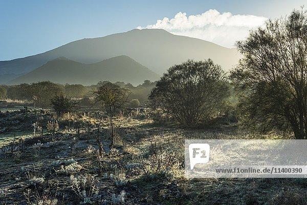 Hochebene Piano dei Grilli  Morgenstimmung  vorne Vulkankegel Monte Ruvolo  hinten Westflanke Vulkan Ätna  Bronte  Sicilien  Italien  Europa