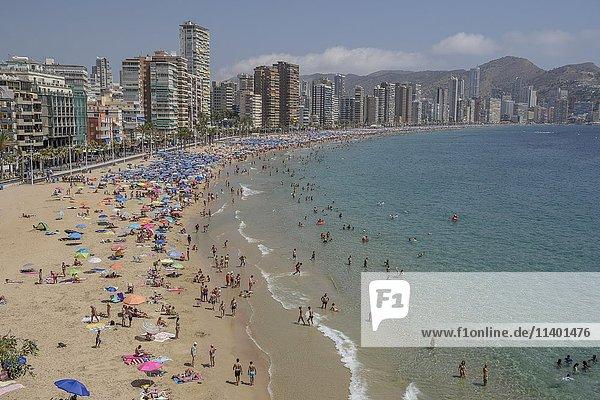 Touristen an der Playa Levante  Benidorm  Provinz Alicante  Costa Blanca  Spanien  Europa