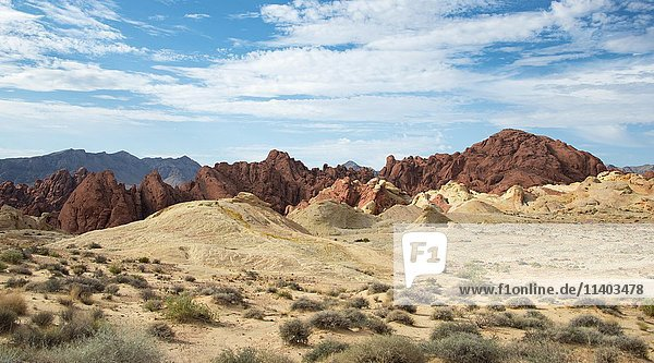 Fire Canyon with Silica Dome  Valley of Fire State Park  Mojave Desert  Nevada  USA  North America