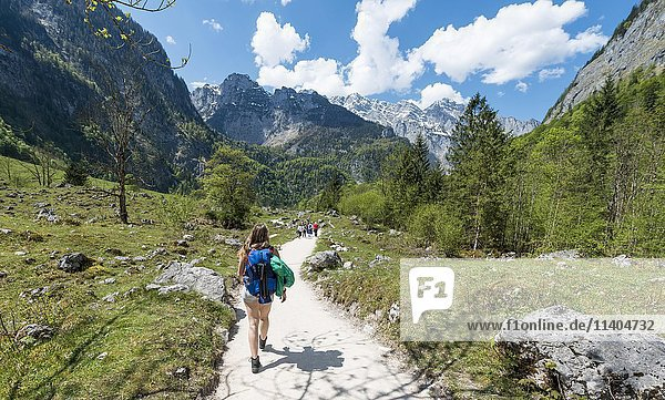 Young female hiker on a trail to Upper lake  Salet on Lake Königssee  Berchtesgaden National Park  Berchtesgadener District  Upper Bavaria  Bavaria  Germany  Europe