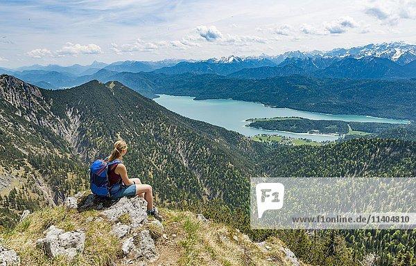 Wanderin blickt auf den Kochelsee vom Gipfel des Heimgarten  links Herzogstand  Oberbayern  Bayern  Deutschland  Europa