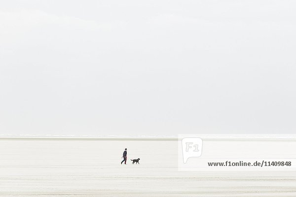 Person with dog walks over the sandbank in stormy weather  sand drift  Sankt Peter-Ording  Schleswig-Holstein Wadden Sea National Park  North Frisia  Schleswig-Holstein  Germany  Europe