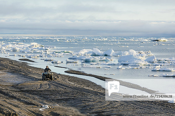 Two native Alaskan men drive an ATV down a sand beach along the Arctic Ocean filled with sea ice in summer  North Slope  Arctic Alaska  USA