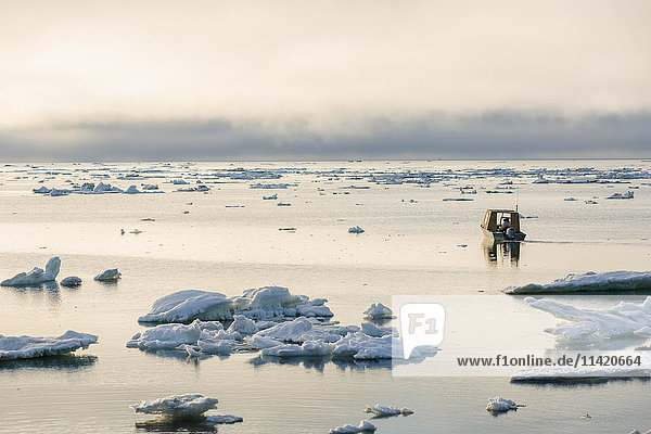 A small outboard boat motors through icebergs in the Arctic Ocean on a calm evening  North Slope  Barrow  Arctic Alaska  USA  Summer