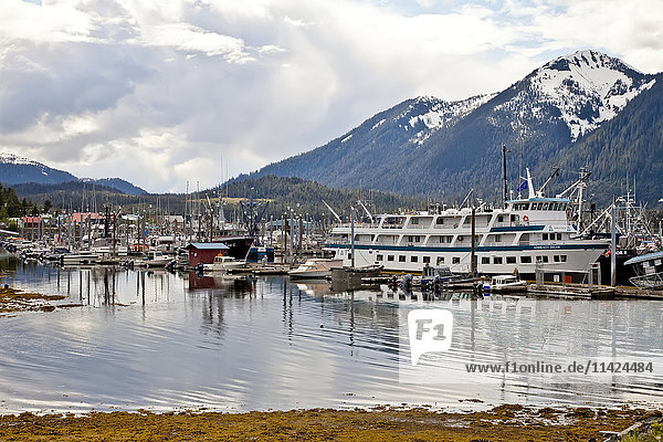 View of Middle Harbor at Petersburg  Southeast Alaska  USA