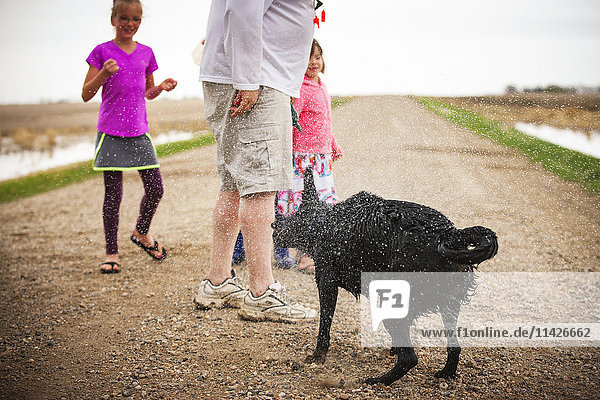 'A dog shakes to spray the water off it's fur while on a walk with a family; Saskatchewan  Canada'