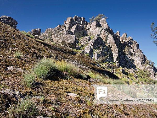 Granite in Muñana cliff. Madrid. Spain. Europe.