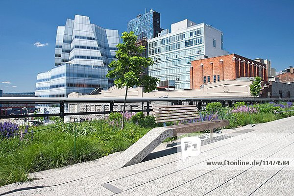 HIGH LINE ELEVATED URBAN PARK CHELSEA MANHATTAN NEW YORK CITY USA.