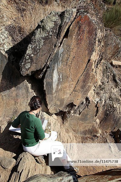 Prehistoric rock art. Archaeologist pointing to a prehistoric petroglyph (rock carving) of a bull in Coa Valley  Portugal. Coa Valley is one of the world's oldest rock art sites and a UNESCO World Heritage Site.