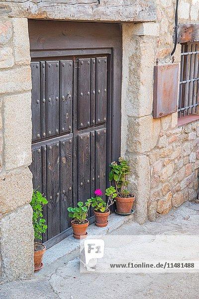 Cat by a door. San Martin del Castañar  Sierra de Francia Nature Reserve  Salamanca province  Castilla Leon  Spain.
