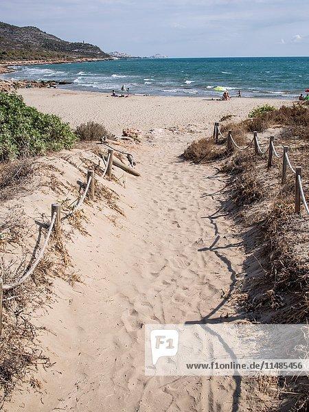 Access road to the beach in the Sierra de Irta  Peñíscola  Castellón  Spain