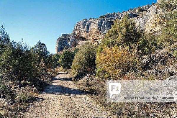 Road to Casuar's gorge. Segovia. Castilla Leon. Spain. Europe.