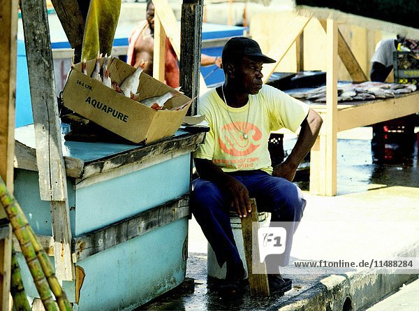 Fisherman with fresh catch of Red Snappers in open bayfront market  Nassau  Bahamas