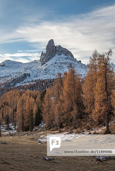 Becco di mezzodi  Croda da Lago  Cortina d'Ampezzo  Belluno  Veneto  Italy. Becco di mezzodi.