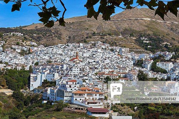 Competa. Axarquia  Traditional white town  Malaga province  Andalucia  Spain.